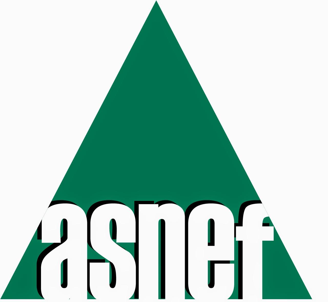 Logo ASNEF Triangulo